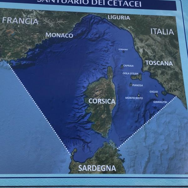 エルバ島地図